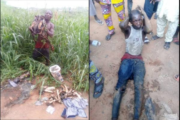 Man Nabbed With Human Skeleton In Ibadan, Arrested for same crime thrice Now
