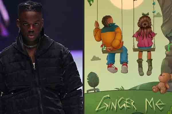 New music from Rema calls this one Ginger Me